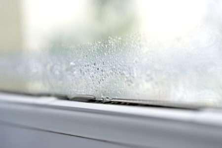 prevent mould around windows